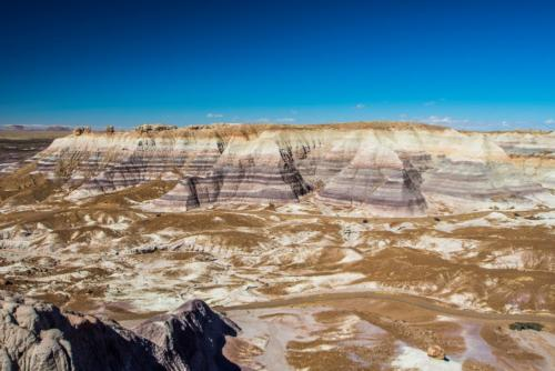 PetrifiedForest 20